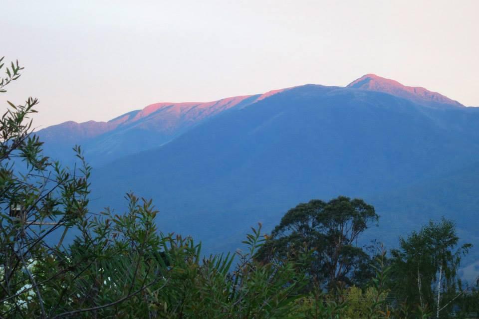 bogong view